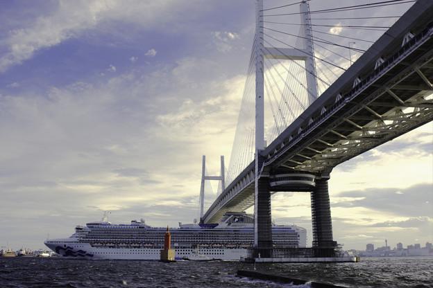 Photos: ダイヤモンドプリンセス出港