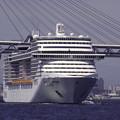 写真: MSCスプレンディダ入港