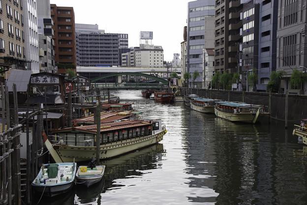 写真: 神田川