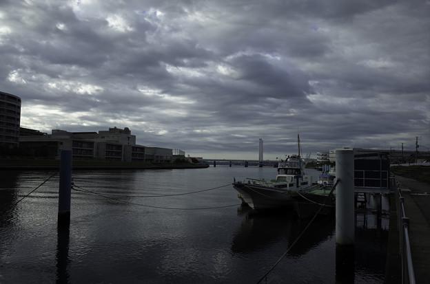 写真: 鶴見川の夜明け