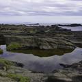 写真: 城ヶ島の海岸