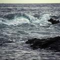 Photos: 城ヶ島の海岸