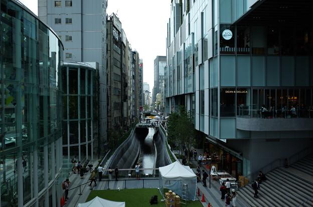 渋谷川(SHIBYA STREAM)