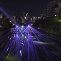 写真: 大岡川 光の川辺