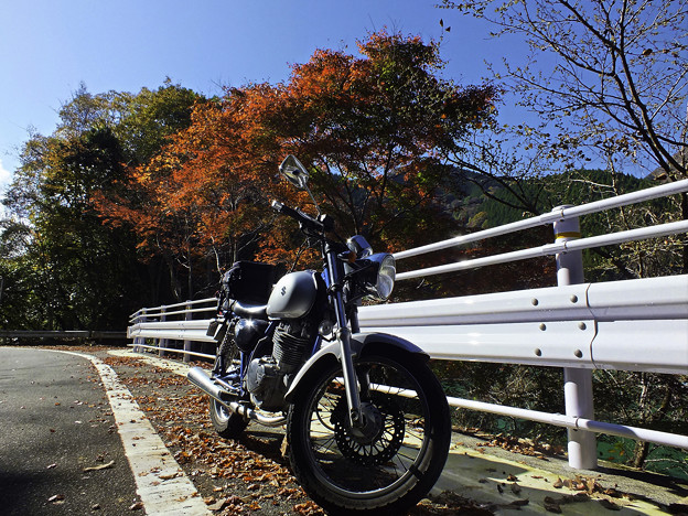 紅葉の林道ツーリング