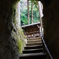 写真: 浄智寺のトンネル