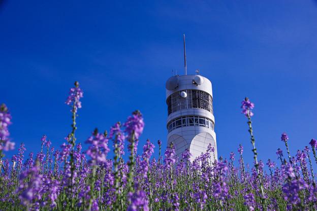 白いタワーと青い空