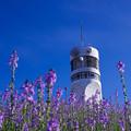 Photos: 白いタワーと青い空