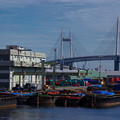 Photos: 港の風景
