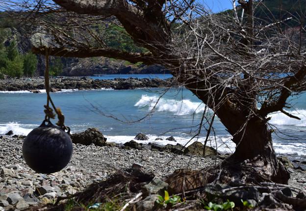 洲崎海岸2