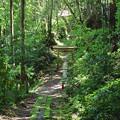 Photos: 狐度山神社鳥居