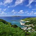 Photos: 母島小剣崎山から望む