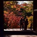 Photos: 円覚寺山門