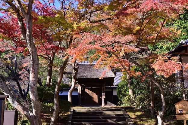 円覚寺・居士院
