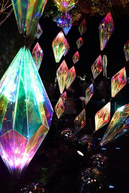 湘南の宝石2
