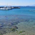 Photos: 葉山・真名瀬海岸の港