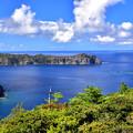 父島中央山からの眺め