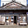 Photos: 老舗酒屋の看板犬