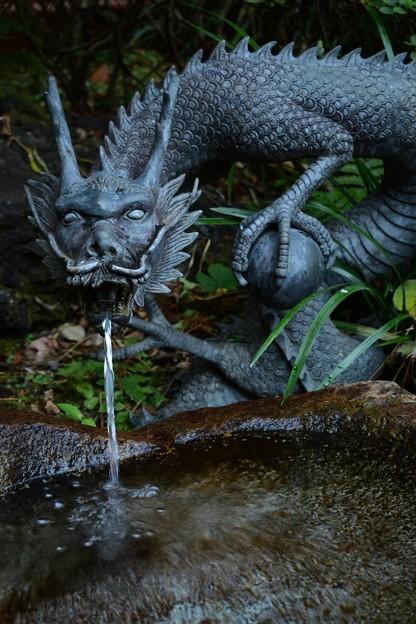 水琴窟の龍