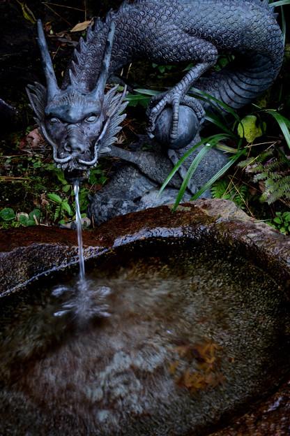水琴窟の龍2