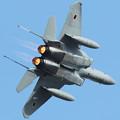 入間基地航空祭2018  F-15