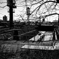 Photos: IMG_6337-強化-Edit