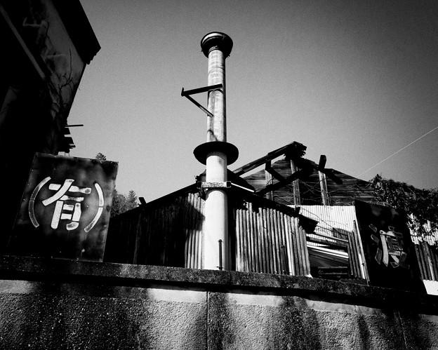 Photos: IMG_6354-強化-Edit