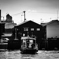 Photos: IMG_6357-強化-Edit