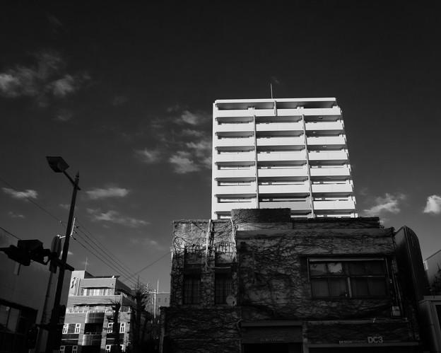 Photos: IMG_6394-強化-Edit
