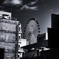 Photos: IMG_0680-Edit