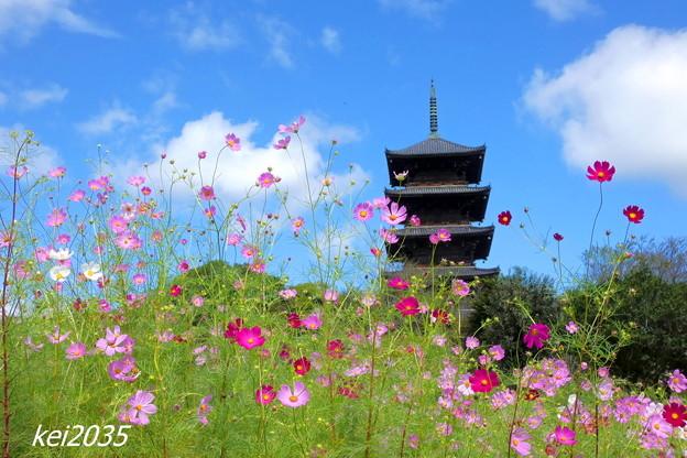 Photos: 吉備路の秋 NO.2