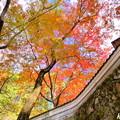 龍泉寺の紅葉NO.2