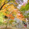 龍泉寺の紅葉NO.3