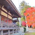 龍泉寺の紅葉NO.5