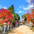 龍泉寺の紅葉NO.8