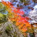 龍泉寺の紅葉NO.9