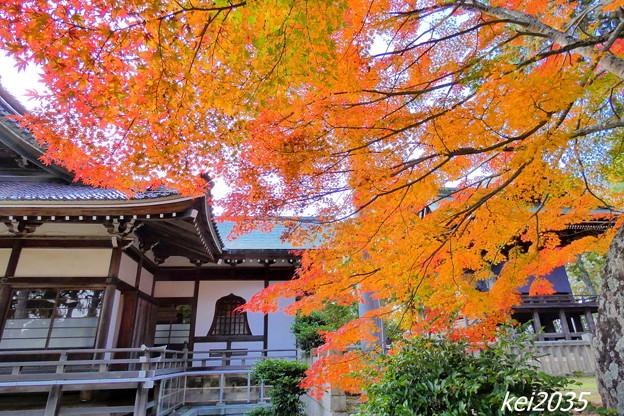 Photos: 龍泉寺の紅葉NO.11