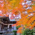 龍泉寺の紅葉NO.11