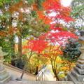 赤磐 千光寺の紅葉NO.4
