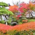 吉備寺の紅葉NO.2