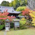 吉備寺の紅葉NO.3