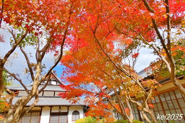 Photos: 吉備寺の紅葉NO.4
