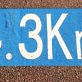 No.61 たまリバーロード 調布エリア4.3kmポスト