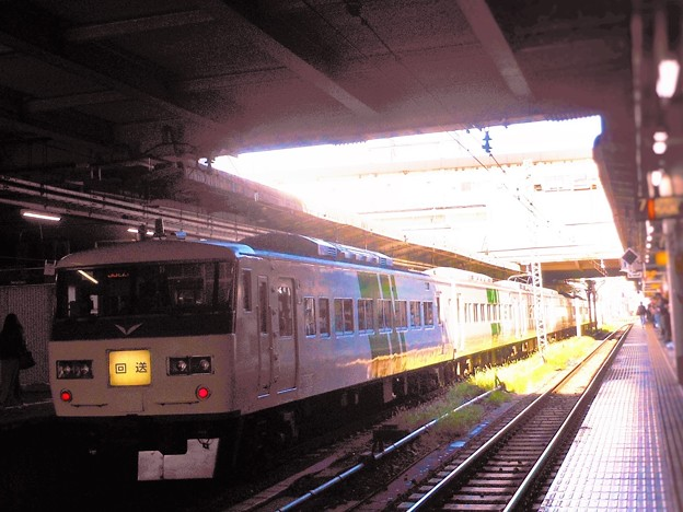 No.98 JR東日本185系特急 緑一色 @2019.10.26上野駅
