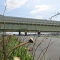 No.214 和泉多摩川の河川敷 その1
