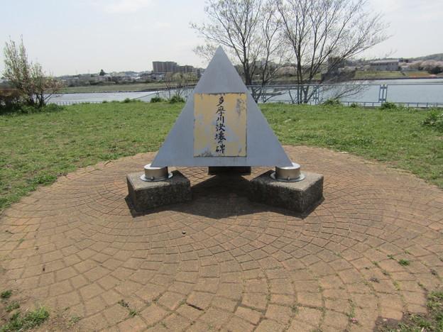 No.224 和泉多摩川の河川敷 その10