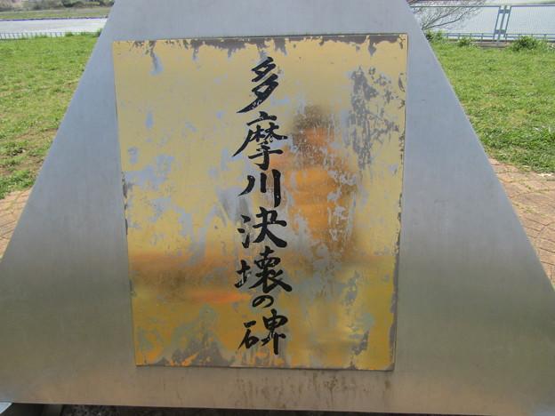 No.225 和泉多摩川の河川敷 その11