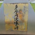 Photos: No.225 和泉多摩川の河川敷 その11