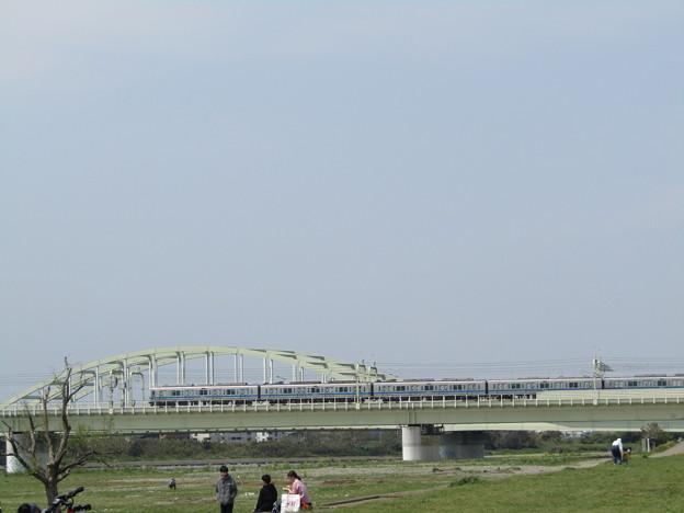 No.228 和泉多摩川の河川敷 その14