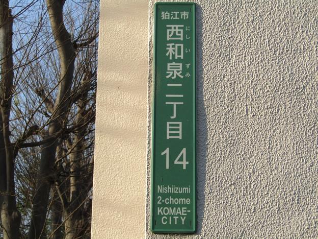 No.241 200404_西和泉二丁目14_アルミ製転写プリント_東京都狛江市